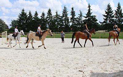 centre equestre 78